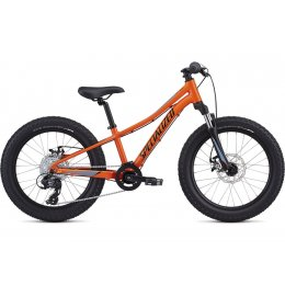 ВЕЛОСИПЕД 20 SPECIALIZED RIPROCK ORG CHAR GRY